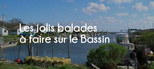 articles les jolies balades à faire sur le Bassin d'Arcachon